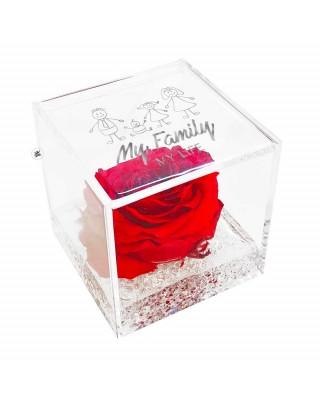 copy of Rosa eterna da...