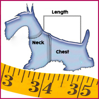 Size guide for your dog
